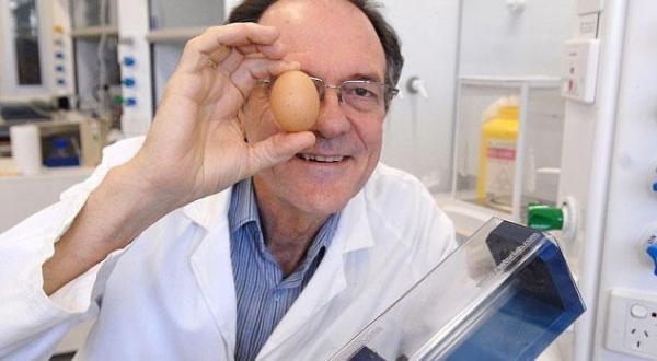 عالم أسترالي يخترع جهازًا لإعادة البيضة نيئة بعد سلقها - University Journal