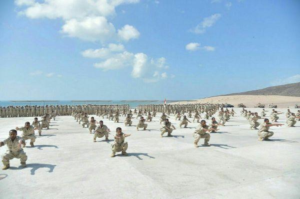السعودية تسلم رواتب الجيش الوطني من المقاومة الجنوبية - University Journal