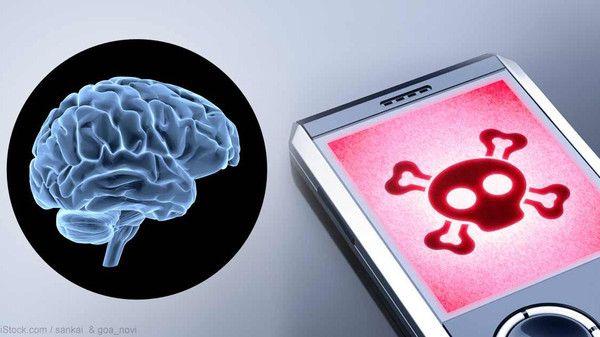 أخطر وأحدث دراسة عن علاقة أشعة الهاتف والإصابة بالسرطان - صحيفة الجامعة