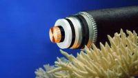 كابلات الإنترنت المقطوعة تحت البحر تصلح نفسها بفضل الصمغ الجديد