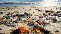 """البحر يقذف كميات هائلة من الكهرمان إلى شاطئ قرية """"يانتارني"""" غرب روسيا"""