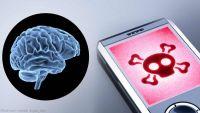 أخطر وأحدث دراسة عن علاقة أشعة الهاتف والإصابة بالسرطان